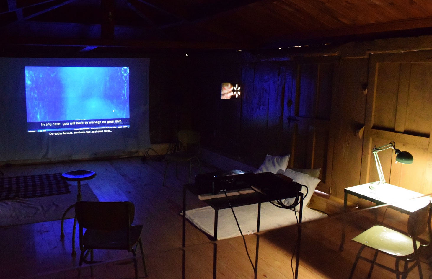 CONTRACORRIENTE. Inner Nature III videoart and ecology exhibition  at PACA (Gijón)  6-28 oct. 2018